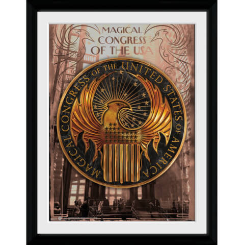 Fantastic Beasts Magical Congress Framed Album Cover - 12