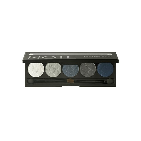 Professional Eye Shadow - 01