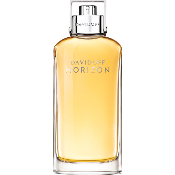 Eau de Toilette Horizon Davidoff  (125 ml)