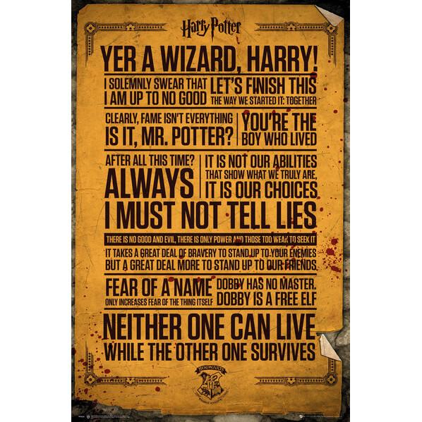 Harry Potter Quotes Maxi Poster - 61 x 91.5cm