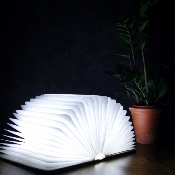 Gingko Mini LED Smart Book Light