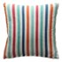 Arya Stripe Cushion - Stripe: Image 1