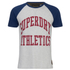Superdry Men's Team Tigers Raglan T-Shirt - Ice Marl: Image 1
