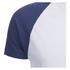 Brave Soul Men's Baptist Raglan Sleeve T-Shirt - White/Ink Blue: Image 3