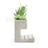 Concrete Desktop Planter and Pen Holder - Large: Image 3