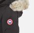 Canada Goose Women's Savona Bomber Jacket - Black: Image 6