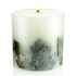 Crabtree & Evelyn Windsor Forest Botanical Candle: Image 2