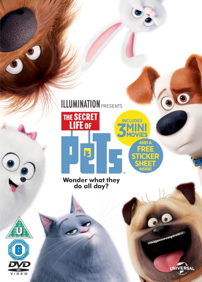 The Secret Life of Pets (Includes UV Copy) DVD | TheHut.com