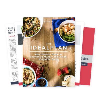 IdealPlan eBook