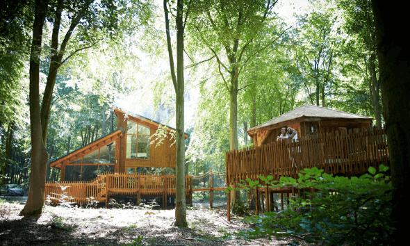 10% off a dreamy woodland escape AND early check in!🍃🌠