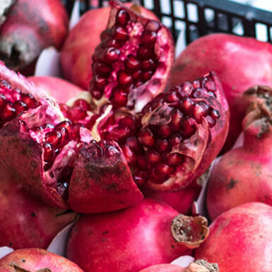 about pomegranate