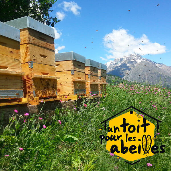 NUXE s'engage avec un toit pour les abeilles