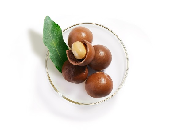 Macadamia Nut Oil. A nourishing and repairing marvel. Find out more