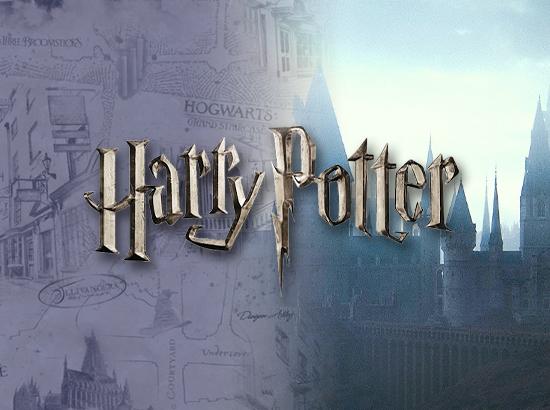 Harry Potter Banner