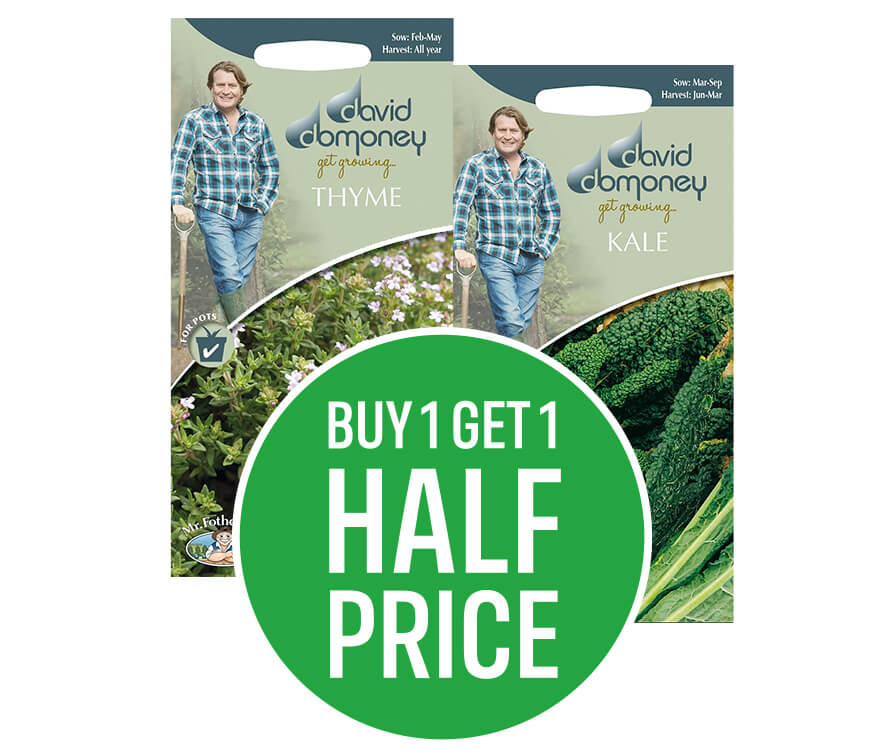 Buy 1 get 1 half price on David Domoney Seeds