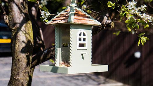 Bird Feeders & Accessories