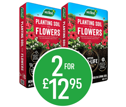 Get 2 for £12.95 on Bio Life Planting Soil for Flowers 40l