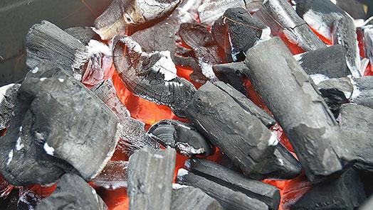 BBQ Fuel