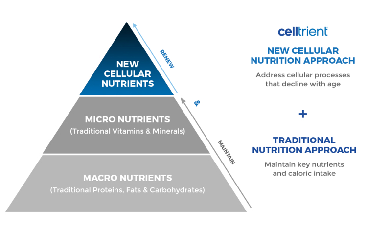 Pyramid of Cellular Nutrients