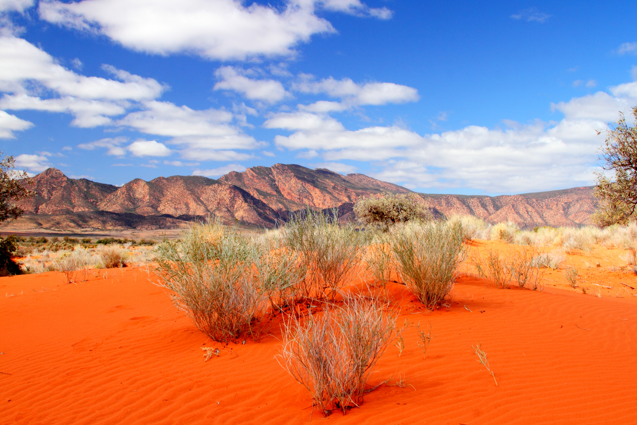 Austalian desert landscape