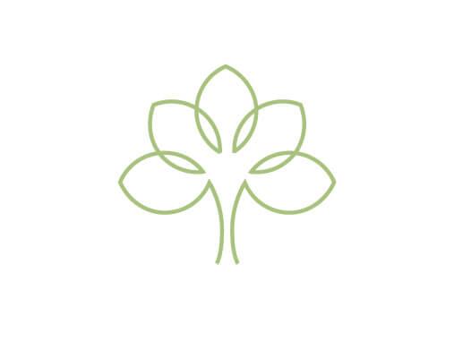 식물 추출원료