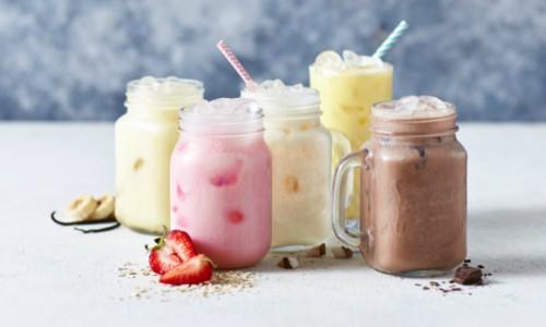meal replacement shake bundle