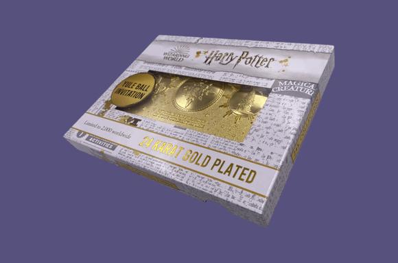 Biglietto replica Harry Potter